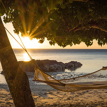 Fiji time | ZEISS FE 35MM F2.8 ZA <br> Click image for more details, Click <b>X</b> on top right of image to close