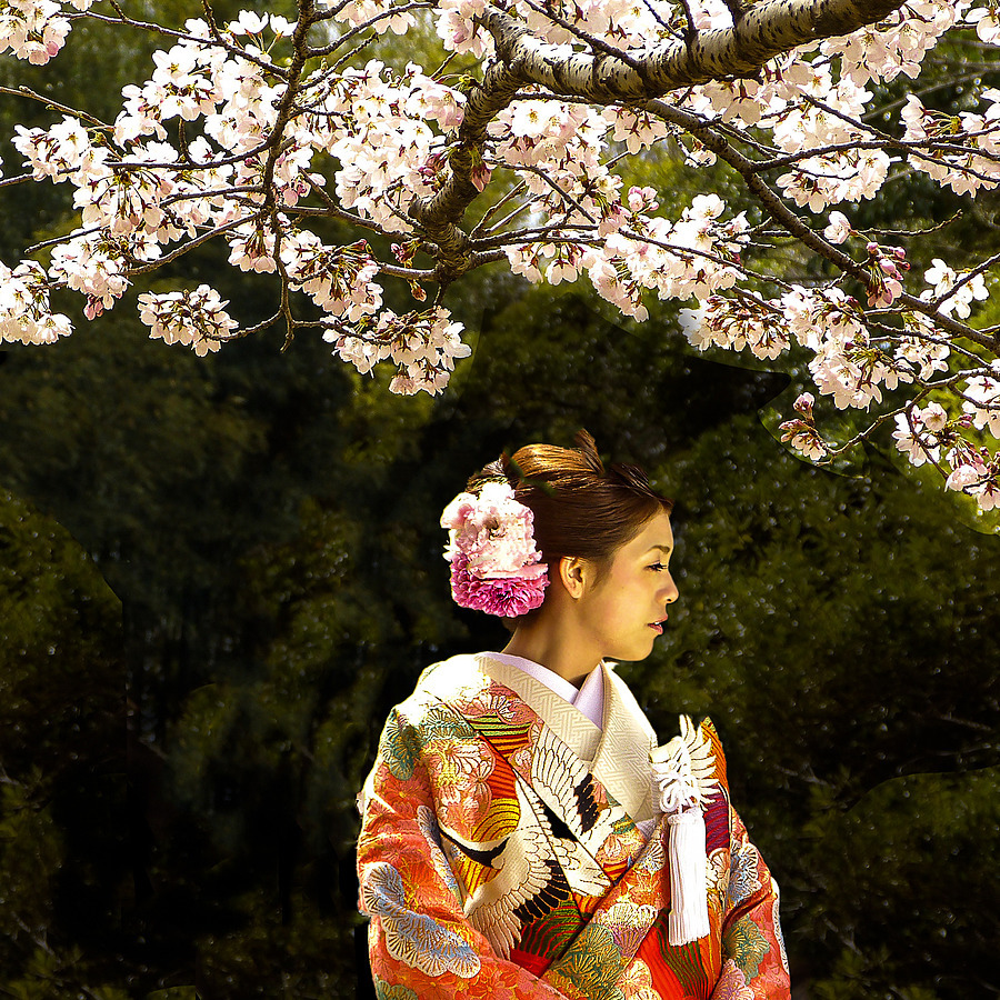 A Geisha's Portrait, Kyoto, Japan | ZEISS ZA VARIO-SONNAR DT F3.5-F4.5 16-80MM <br> Click image for more details, Click <b>X</b> on top right of image to close