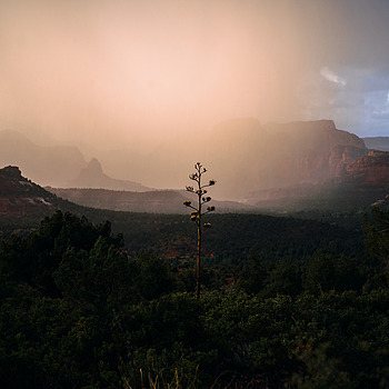Sedona | ZEISS G PLANAR 45MM F2 <br> Click image for more details, Click <b>X</b> on top right of image to close