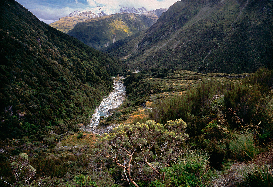 Snowy Creek. Mt. Aspiring Nat. Park, New Zealand. | ZEISS G BIOGON 21MM F2.8 <br> Click image for more details, Click <b>X</b> on top right of image to close