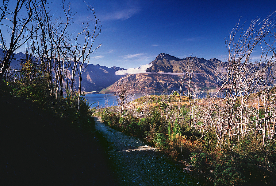 Lake Wakatipu from Moke Lake Track. New Zealand. | ZEISS G BIOGON 21MM F2.8 <br> Click image for more details, Click <b>X</b> on top right of image to close