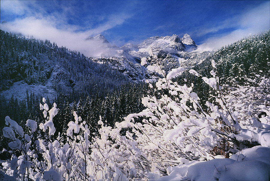 Bryant Peak. Washington Cascades. | ZEISS G BIOGON 21MM F2.8 <br> Click image for more details, Click <b>X</b> on top right of image to close