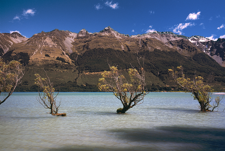 Lake Wakatipu. Glenorchy, New Zealand. | ZEISS ZM BIOGON F2.0 35MM <br> Click image for more details, Click <b>X</b> on top right of image to close