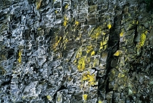 Wall Detail. Deception Crags, Was