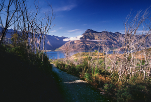 Lake Wakatipu from Moke Lake Trac