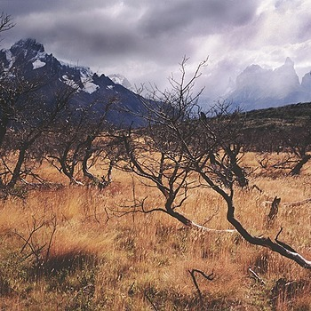 Paine Grande. Patagonia, Chile. | ZEISS ZM C BIOGON F4.5 21MM <br> Click image for more details, Click <b>X</b> on top right of image to close
