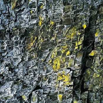 Wall Detail. Deception Crags, Washington State.