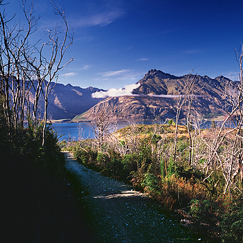 Lake Wakatipu from Moke Lake Track. New Zealand.