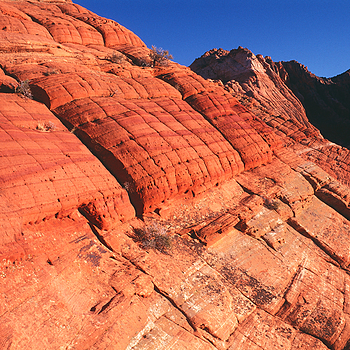 Coyote Buttes, Utah. | ZEISS G BIOGON 21MM F2.8 <br> Click image for more details, Click <b>X</b> on top right of image to close