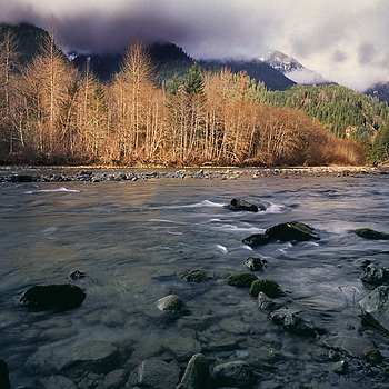 Middle Fork Snoqualmie, washington. | LENS MODEL NOT SET