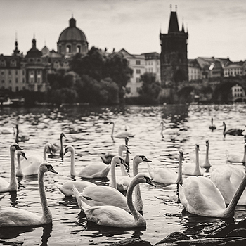 Prague Etude | ZEISS OTUS DISTAGON 55MM F1.4 <br> Click image for more details, Click <b>X</b> on top right of image to close
