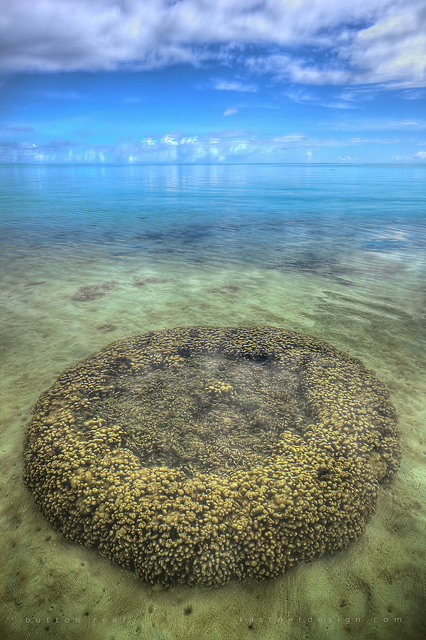 button reef | ZEISS 25MM F2 DISTAGON <br> Click image for more details, Click <b>X</b> on top right of image to close