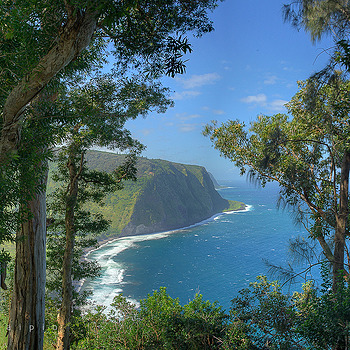 through the trees, waipio | ZEISS CY VARIO-SONNAR 35-70MM F3.4 <br> Click image for more details, Click <b>X</b> on top right of image to close