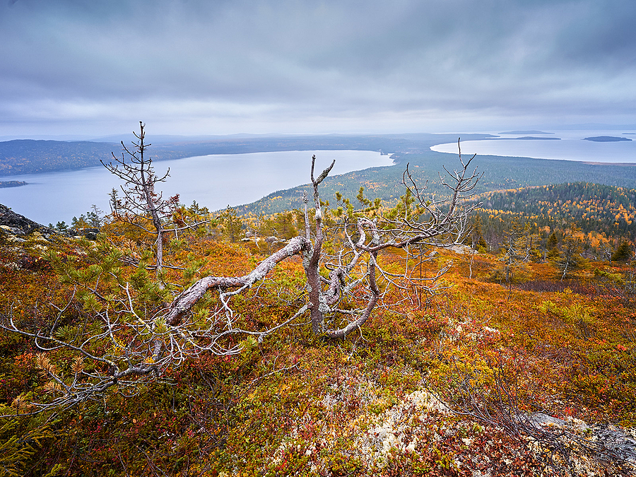 Karelia | ZEISS 18MM F2.8 DISTAGON <br> Click image for more details, Click <b>X</b> on top right of image to close