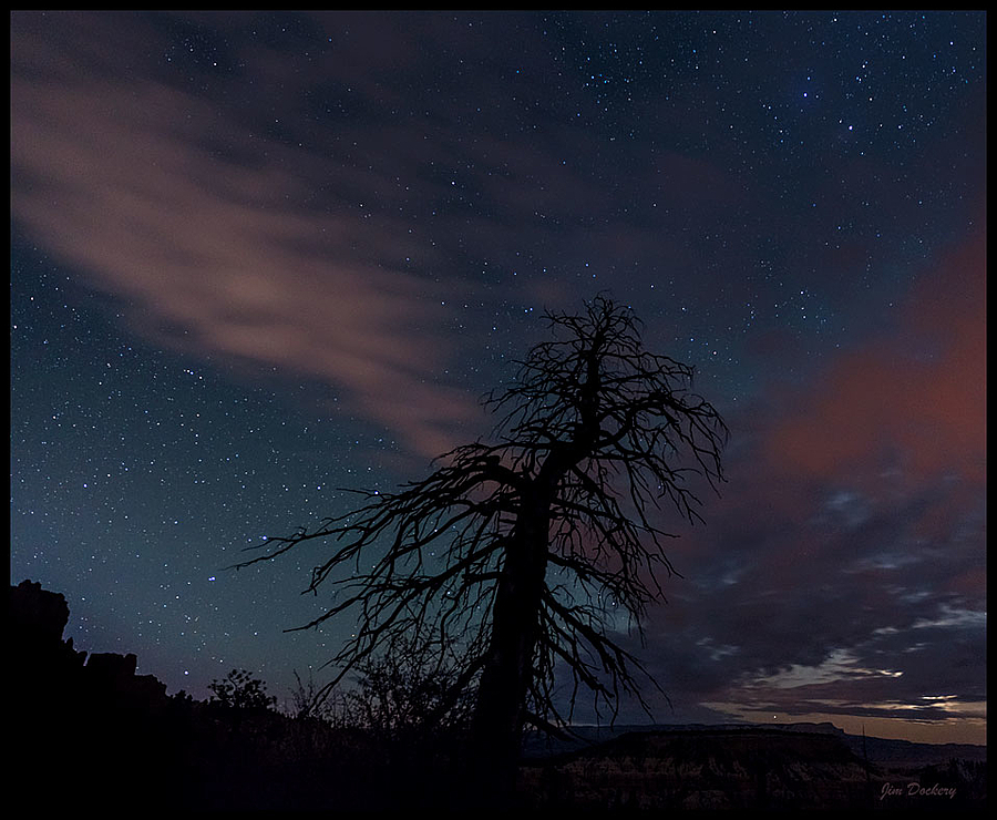 Stars & Tree, Bryce NP, UT | LENS MODEL NOT SET <br> Click image for more details, Click <b>X</b> on top right of image to close