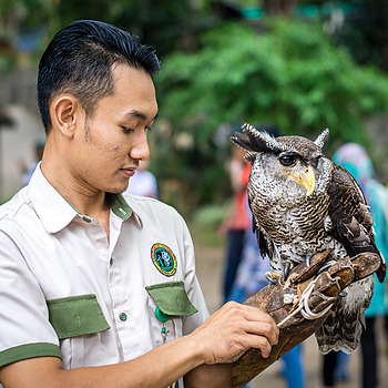 Owl man | LENS MODEL NOT SET