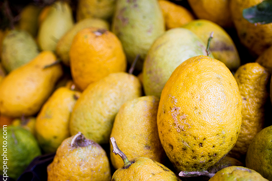 Lemons in Sicily | ZEISS DISTAGON F2.8 21MM <br> Click image for more details, Click <b>X</b> on top right of image to close