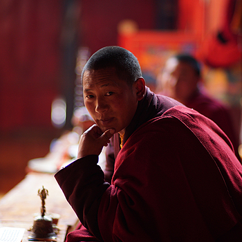 A distracted Monk | ZEISS PLANAR F1.4 85MM