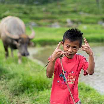 Buffalo Boy | ZEISS SONNAR 55MM F1.8 FE ZA <br> Click image for more details, Click <b>X</b> on top right of image to close