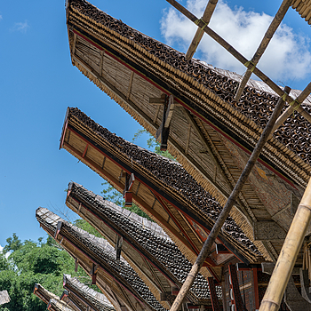 Toraja2 | ZEISS SONNAR 55MM F1.8 FE ZA <br> Click image for more details, Click <b>X</b> on top right of image to close
