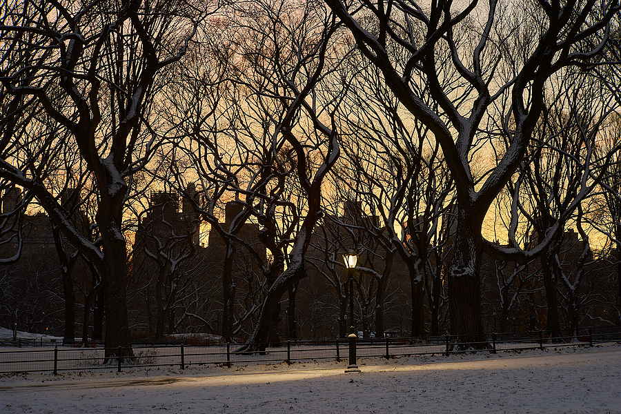 Winter's Dawn in Central Park | LENS MODEL NOT SET <br> Click image for more details, Click <b>X</b> on top right of image to close