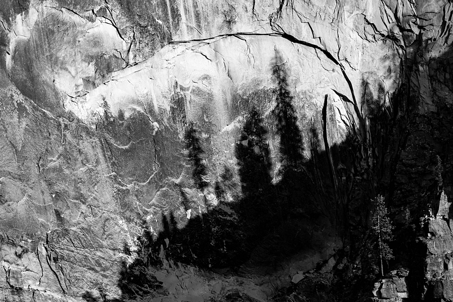 Forest of Shadow and Rock on Half Dome | LENS MODEL NOT SET <br> Click image for more details, Click <b>X</b> on top right of image to close