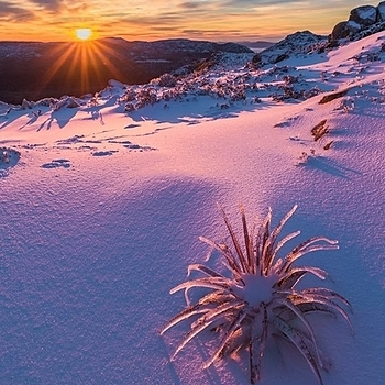 Winter sunrise | LENS MODEL NOT SET <br> Click image for more details, Click <b>X</b> on top right of image to close