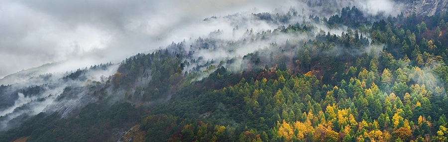 Misty Calanda | ZEISS G SONNAR 90MM F2.8 <br> Click image for more details, Click <b>X</b> on top right of image to close