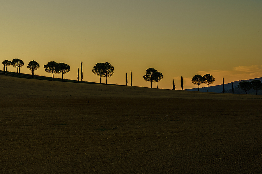 Tuscany Sunset | ZEISS G SONNAR 90MM F2.8 <br> Click image for more details, Click <b>X</b> on top right of image to close