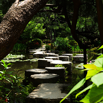 Garden path to home Kyoto | LENS MODEL NOT SET <br> Click image for more details, Click <b>X</b> on top right of image to close