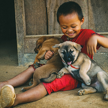 Little boy and the puppies | LENS MODEL NOT SET