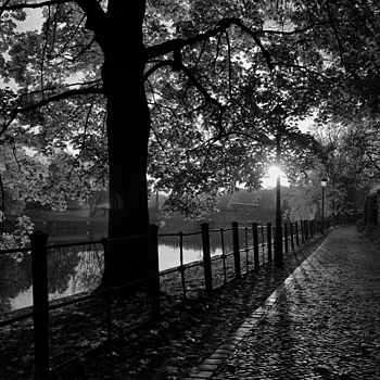 Tiergarten, Lutherbrücke | ZEISS ZA VARIO-SONNAR F2.8 24–70MM <br> Click image for more details, Click <b>X</b> on top right of image to close