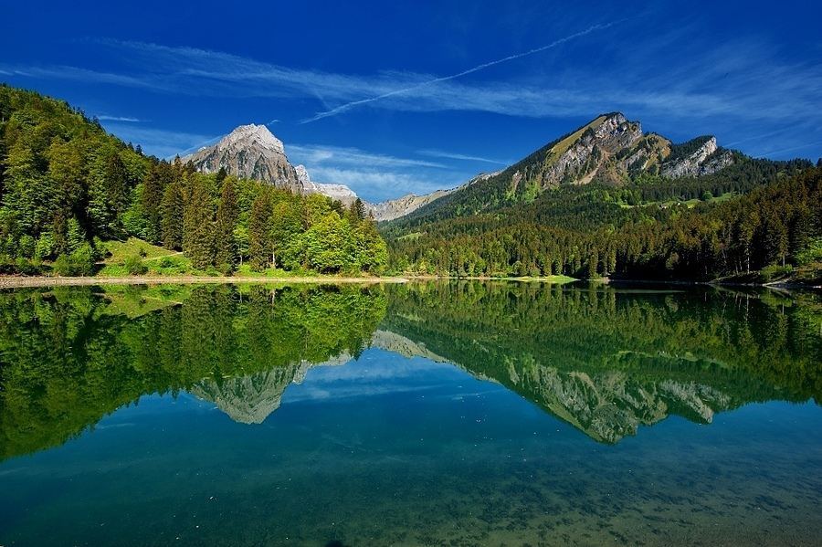 Obersee | ZEISS DISTAGON F3.5 18MM <br> Click image for more details, Click <b>X</b> on top right of image to close