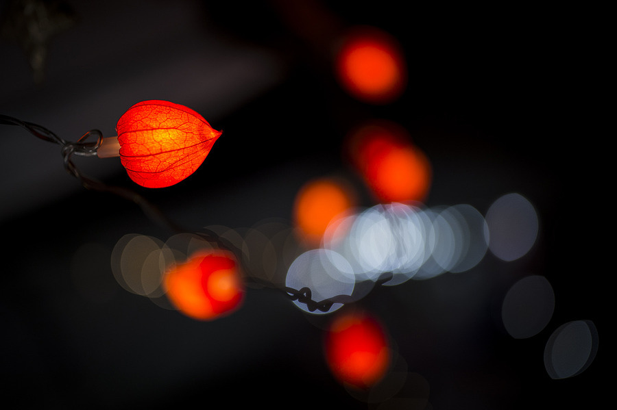 Bokeh 2 | ZEISS OTUS DISTAGON 55MM F1.4 <br> Click image for more details, Click <b>X</b> on top right of image to close