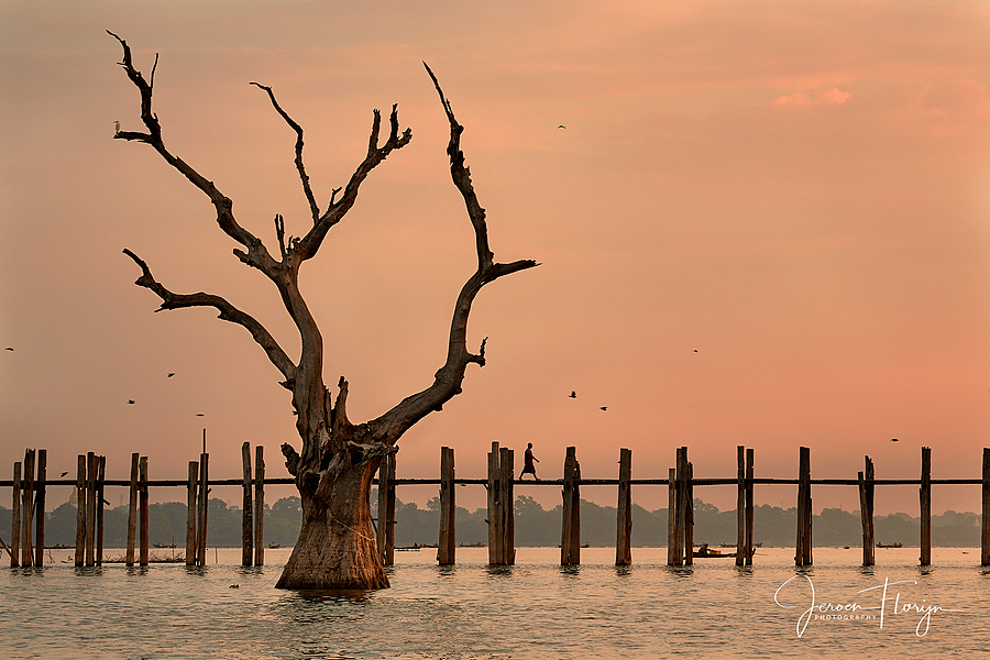 U Bein Bridge | ZEISS APO SONNAR F2 135MM <br> Click image for more details, Click <b>X</b> on top right of image to close