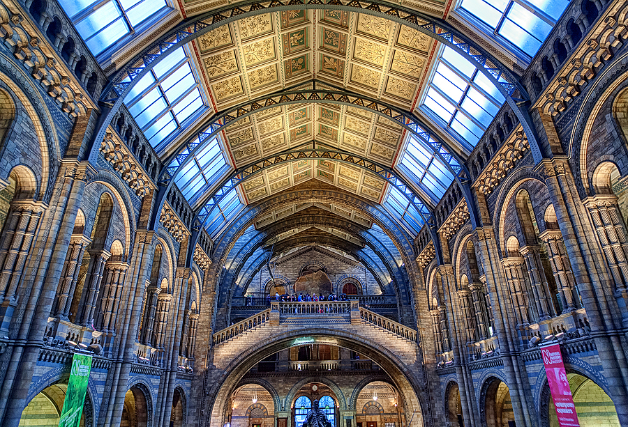 Interior - National History Museum, London | LENS MODEL NOT SET <br> Click image for more details, Click <b>X</b> on top right of image to close