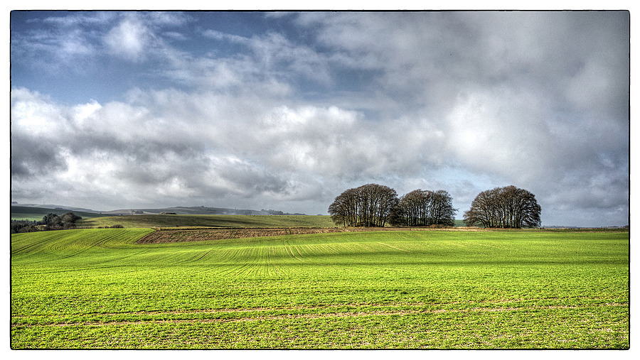 A Wiltshire Landscape | ZEISS FE 35MM F2.8 ZA <br> Click image for more details, Click <b>X</b> on top right of image to close