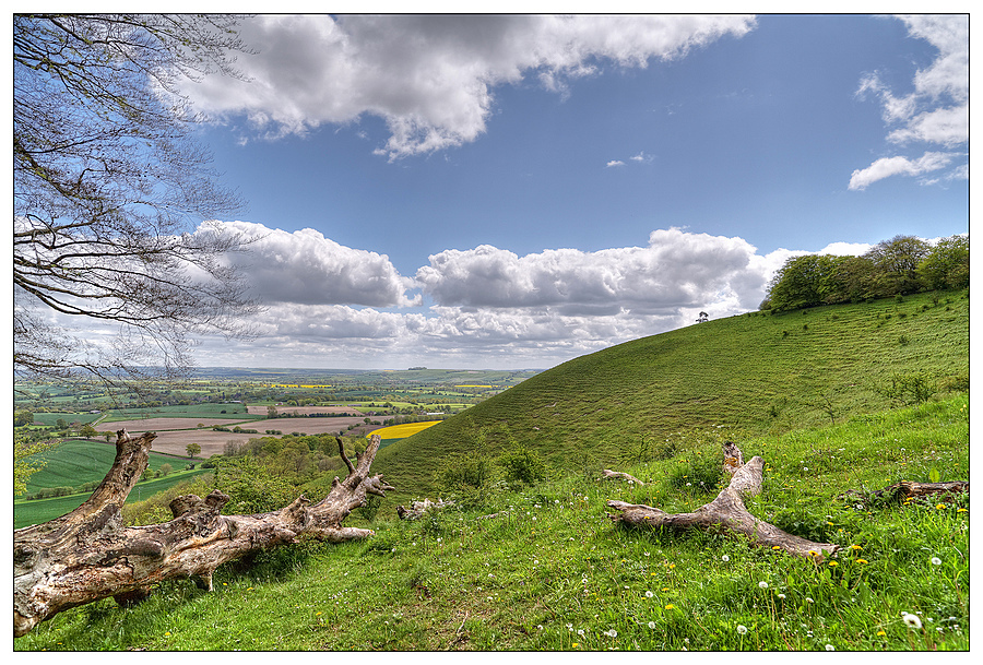 Martinsell Hill, Wiltshire, England | ZEISS DISTAGON F2.8 21MM <br> Click image for more details, Click <b>X</b> on top right of image to close