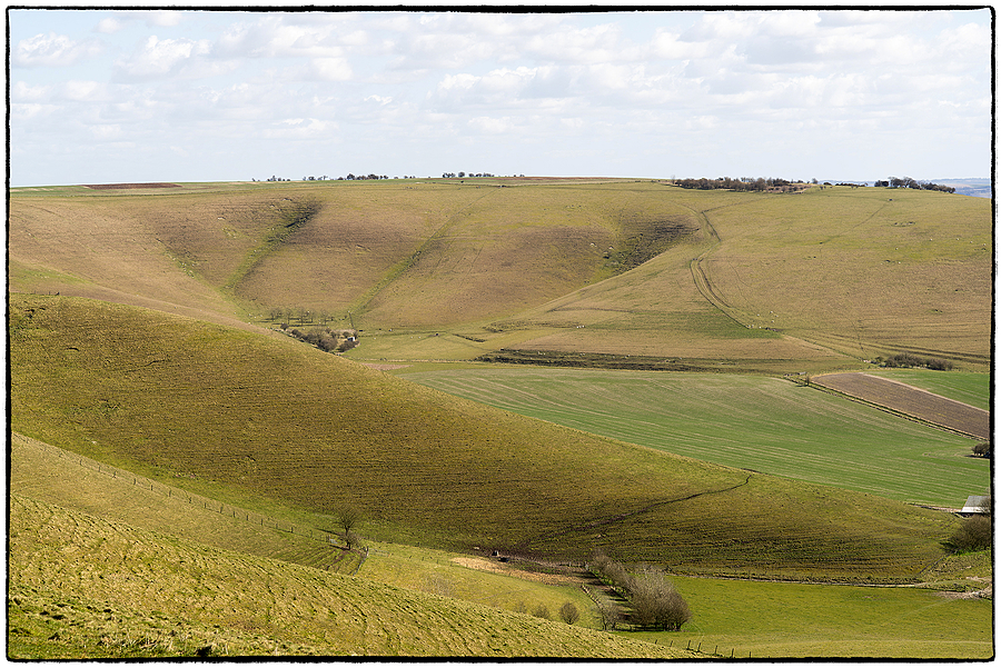 Walking the Wansdyke Path, Wiltshire, England | ZEISS MAKRO PLANAR F2.0 100MM <br> Click image for more details, Click <b>X</b> on top right of image to close