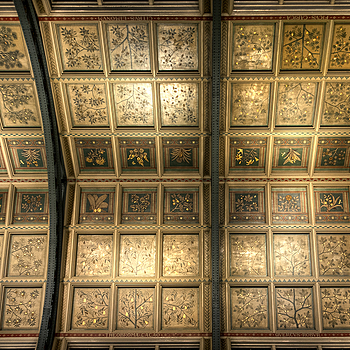 Ceiling above the Main Hall, Natural History Museum, London | ZEISS DISTAGON F2.8 21MM <br> Click image for more details, Click <b>X</b> on top right of image to close