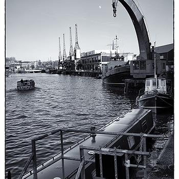 Cranes | ZEISS FE 35MM F2.8 ZA <br> Click image for more details, Click <b>X</b> on top right of image to close