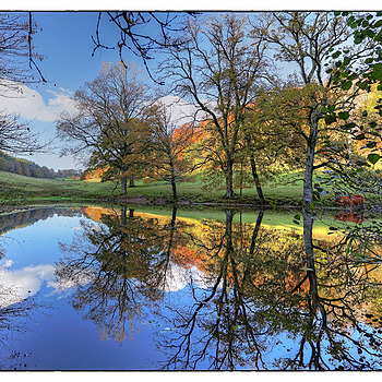 Reflections on the Stourhead Estate | ZEISS DISTAGON F2.8 21MM <br> Click image for more details, Click <b>X</b> on top right of image to close