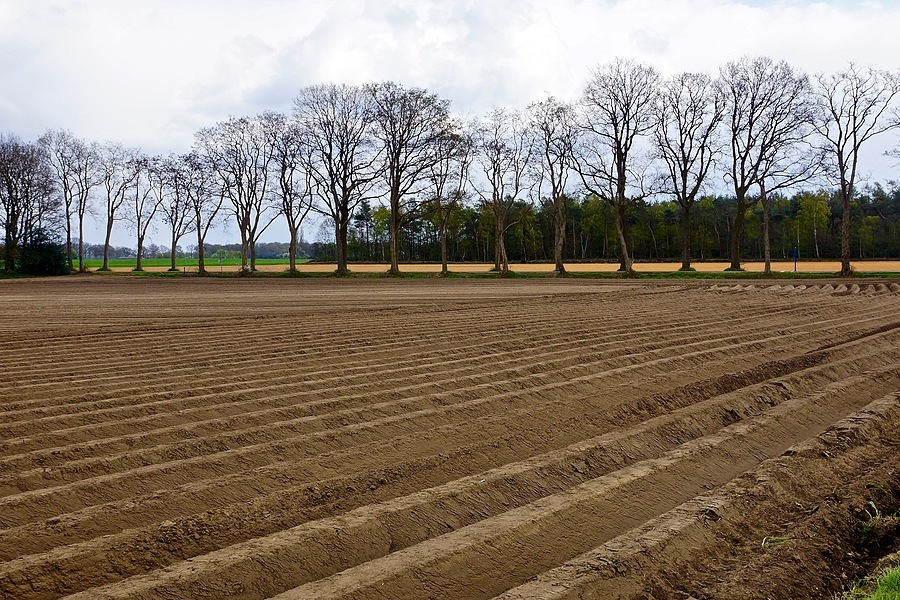 Freshly plowed field near Ruurlo | SONY DT 16-50MM F2.8 SSM (SAL1650) <br> Click image for more details, Click <b>X</b> on top right of image to close