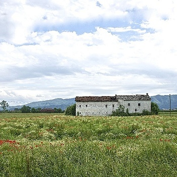 Farm in the Po Valley, Piemonte | LENS MODEL NOT SET <br> Click image for more details, Click <b>X</b> on top right of image to close