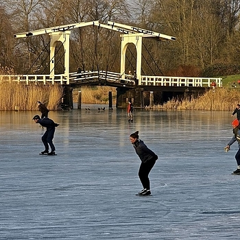 Skating on the Bosbaan, Amsterdam | LENS MODEL NOT SET