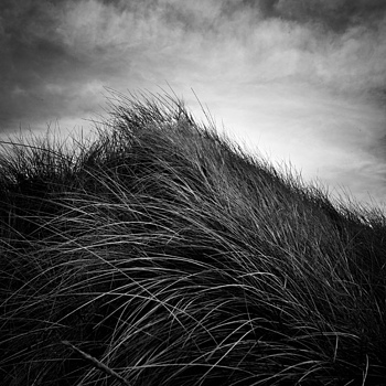 Llanddwyn | ZEISS ZM BIOGON F2.8 21MM <br> Click image for more details, Click <b>X</b> on top right of image to close