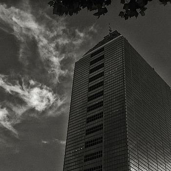 Unrelenting World of Finance | ZEISS ZM DISTAGON F4 18MM