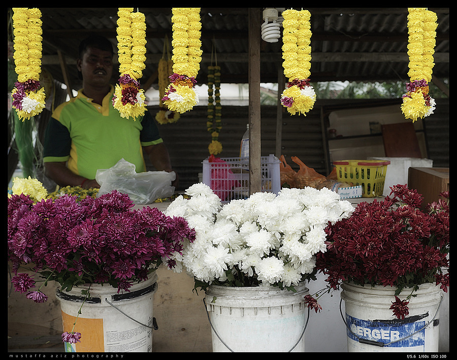 Flowers & Florist | ZEISS LOXIA 35MM F2 BIOGON T* <br> Click image for more details, Click <b>X</b> on top right of image to close
