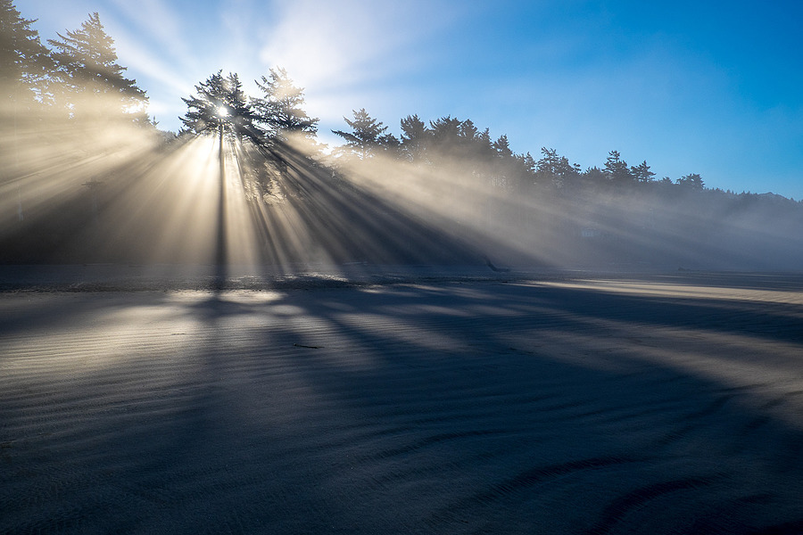 Morning Rays | LENS MODEL NOT SET <br> Click image for more details, Click <b>X</b> on top right of image to close